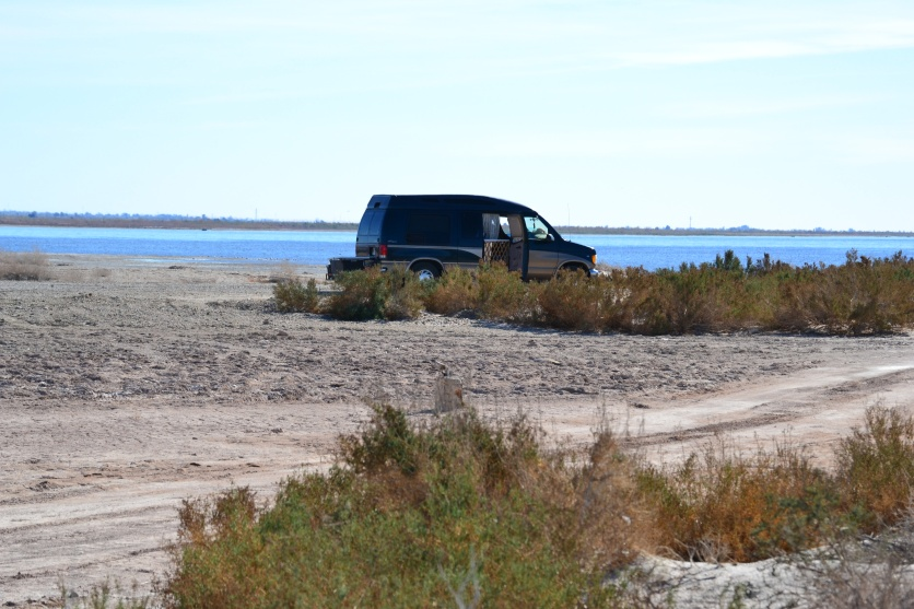 Niland Boat Ramp Salton Sea