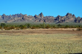 Rugged Mtns of Kofa ...