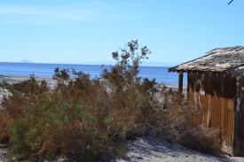 Salton Sea Niland Boat Ramp area