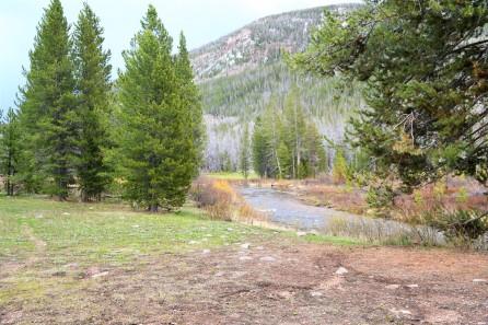 Creek through our Sulphur Camp. Bear River I think