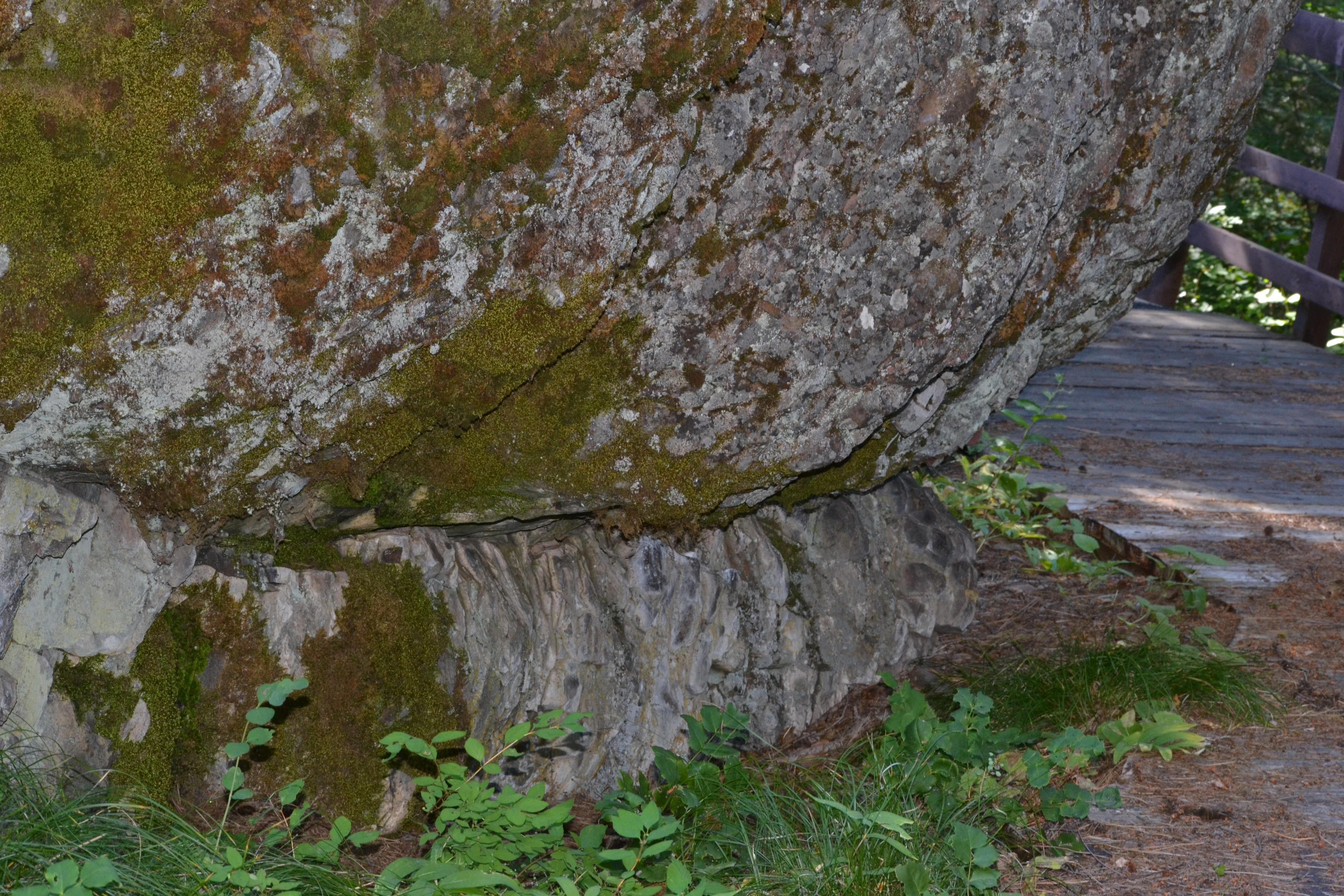 DSC_0022 (1)Huge Rock along trail in Wetmore Camp