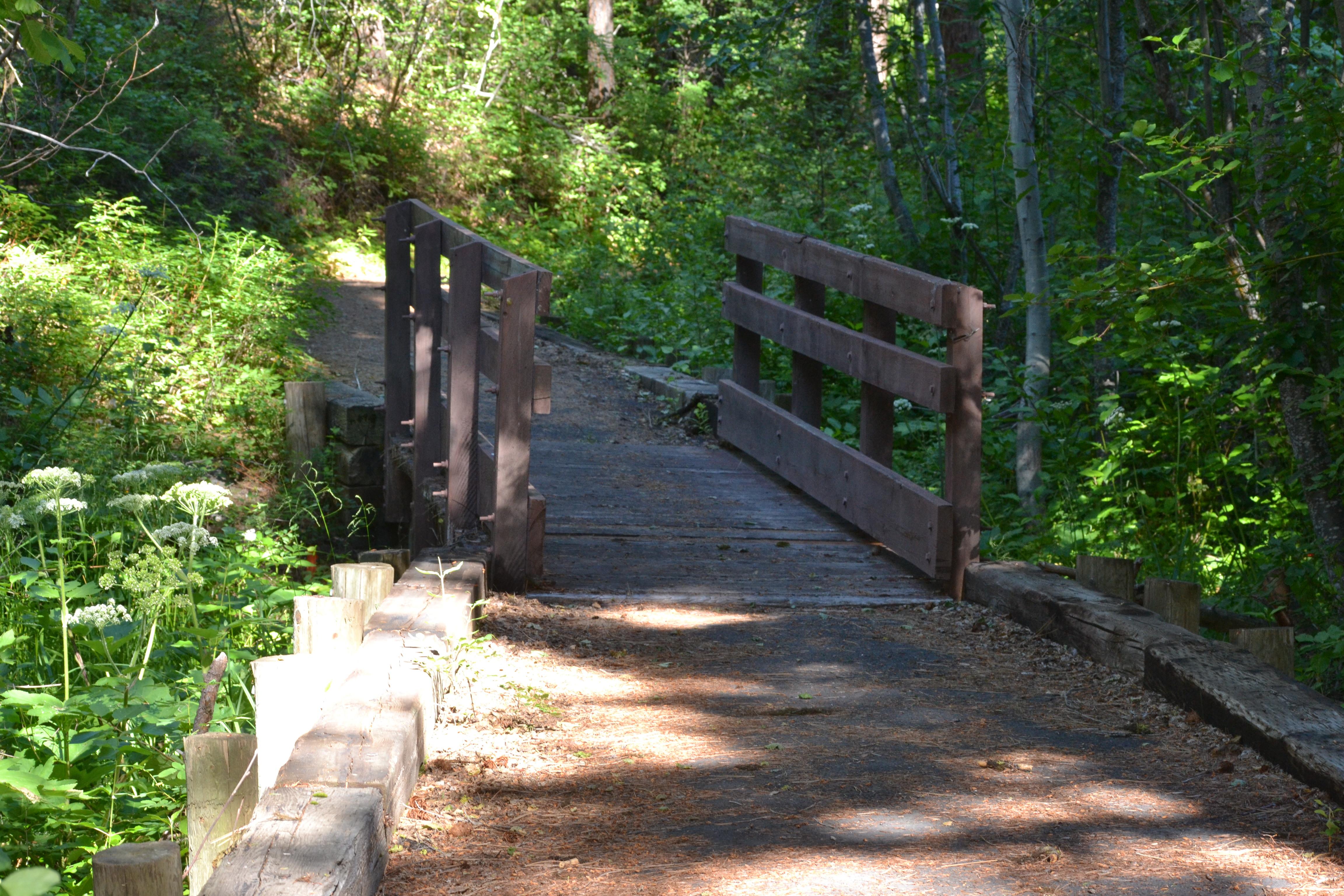 DSC_0027 (1)Bridge to the Wetmore CG trail
