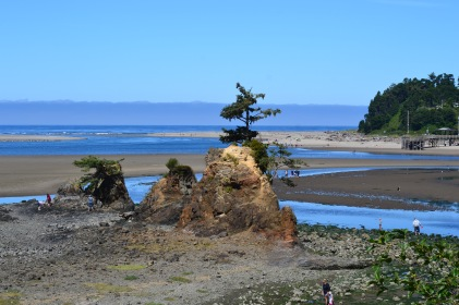 DSC_0035Siletz Bay, Lincoln City OR