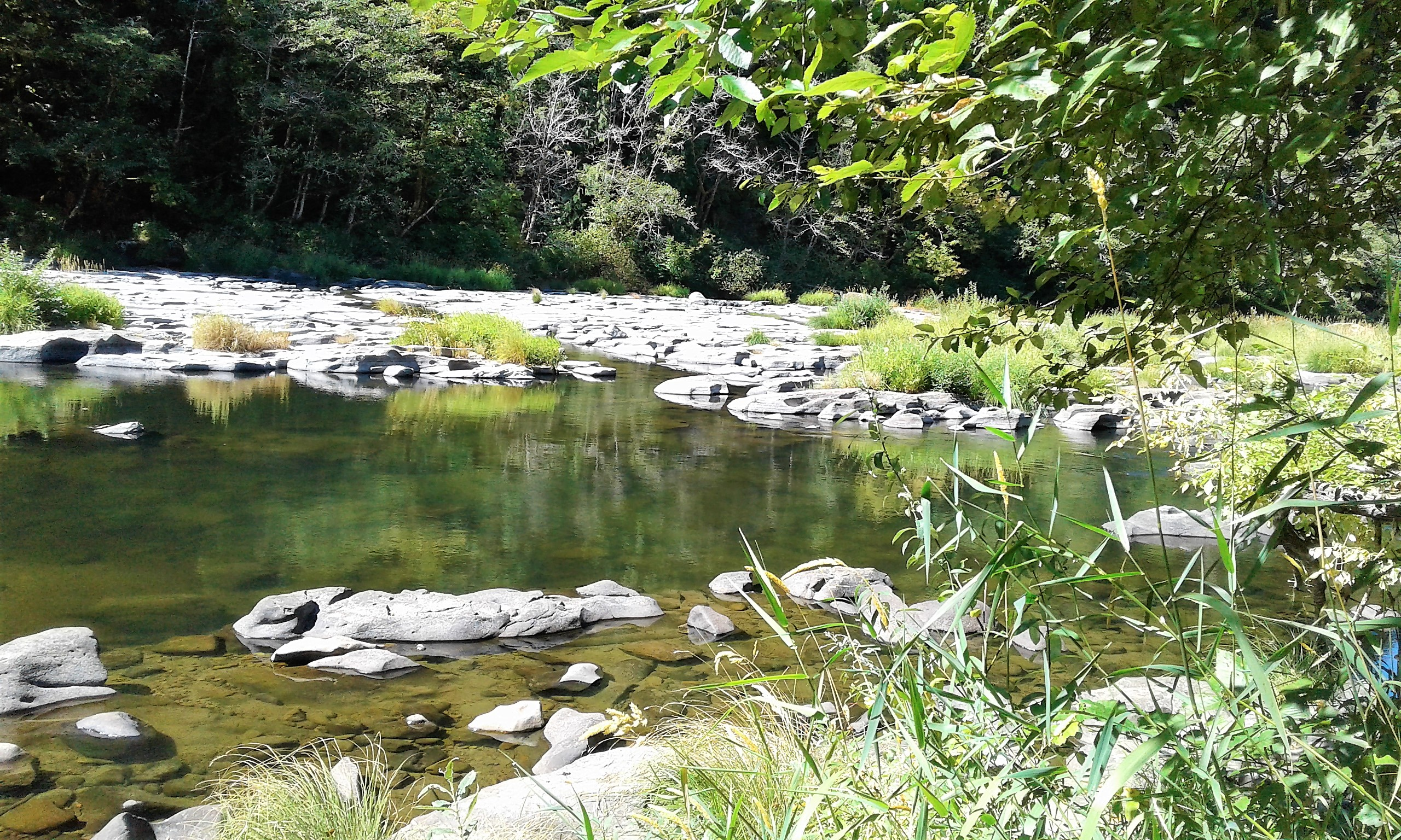 20180903_123723Flat Rock on a fork of the Siuslaw River