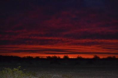 DSC_0087Dramatic Red Sunrise in Bouse Camp