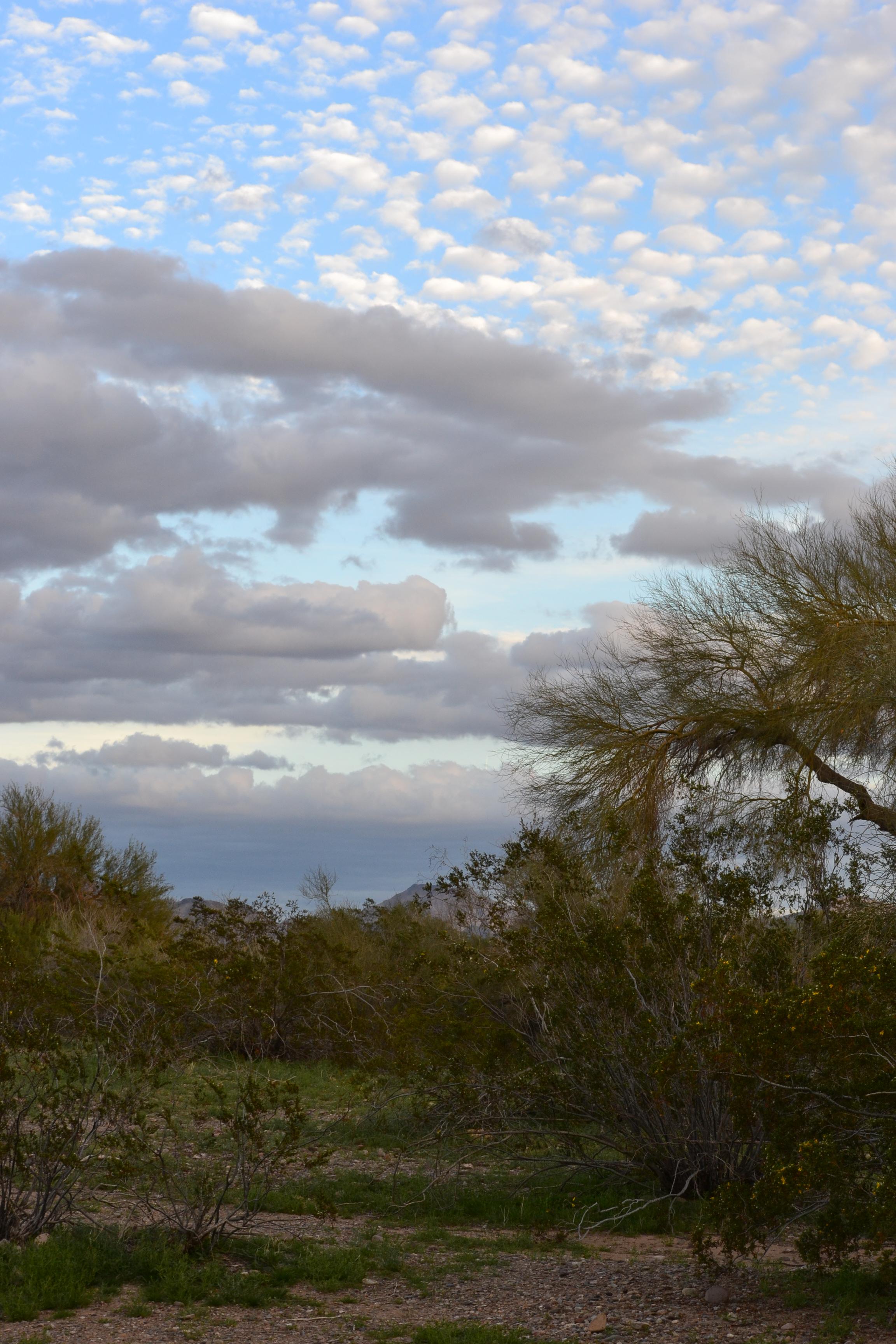 DSC_0132Green Desert Clouds, and Buttermilk Clouds