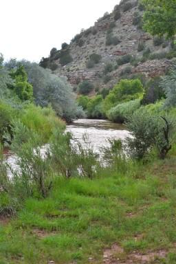 DSC_0011Pecos River