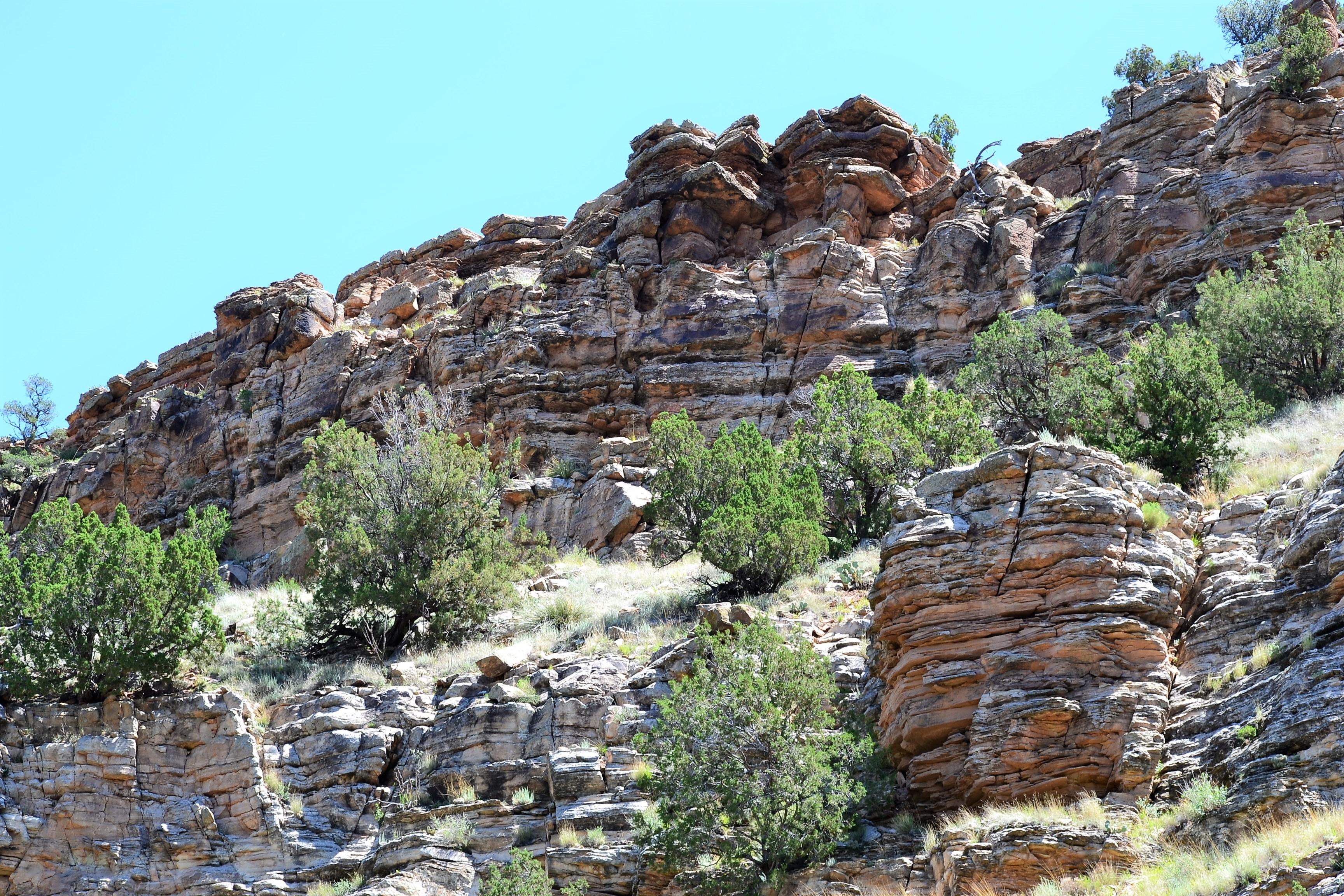 DSC_0020Sandstone Bluff Above the Pecos